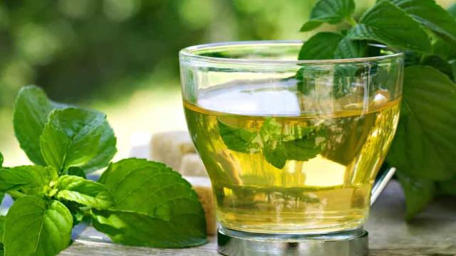 Conheça as propriedades surpreendentes do chá de boldo