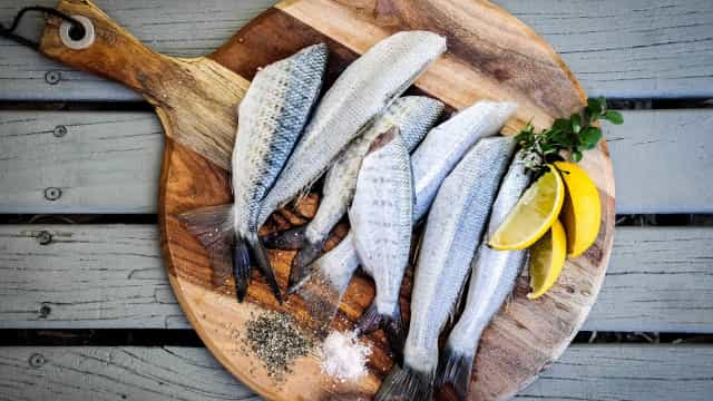 Veja 8 peixes e frutos do mar que você deve evitar