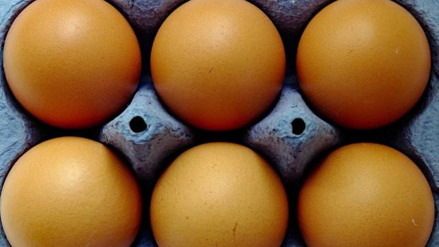 PF aponta que unidade de ovo foi comprada a R$ 12,15 por escola