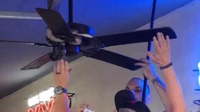 Homem captura cobra durante aniversario no Texas