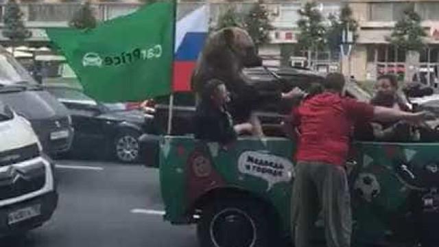 Urso toca vuvuzela em meio a comemoração da torcida russa