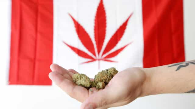 Venda de maconha para uso recreativo começa em outubro no Canadá