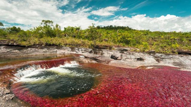 O rio mais bonito do mundo fica na Colômbia; veja