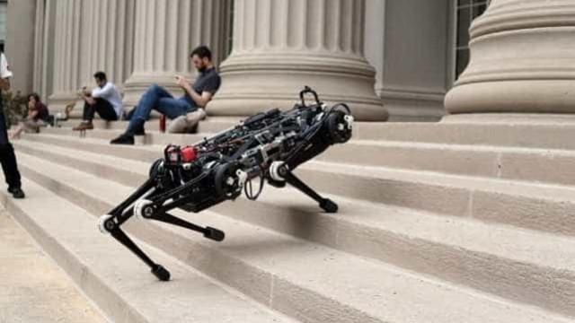 MIT cria 'robô labrador' que sobe escadas e supera obstáculos