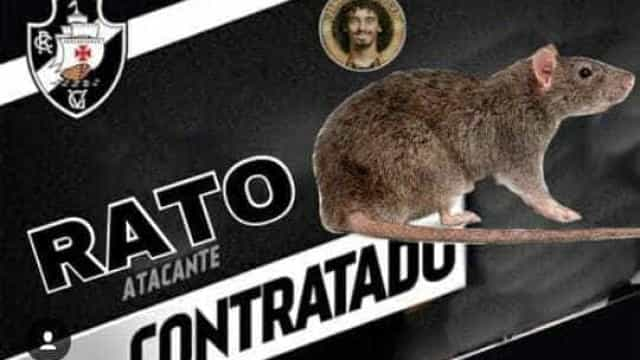 Rato no gramado em jogo do Vasco em São Januário gera memes; veja