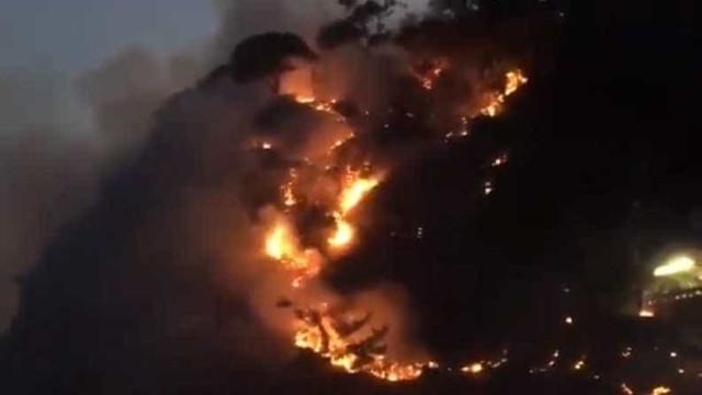 Incêndio atinge mata em São Conrado, no Rio