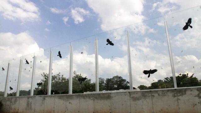 Sem dono, muro de vidro na USP tem abandono e investigação inconclusiva