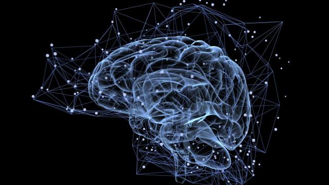Com acelerador de partículas, cientistas observam neurônios em 3D