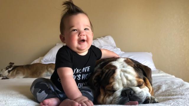 Veja o momento fofo em que um bebê tenta acordar seu cão para brincar