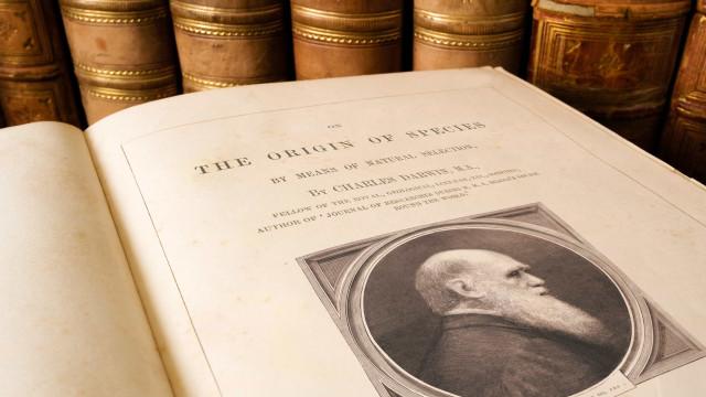 Vencedores do Nobel de Química usaram conceitos de Darwin em pesquisa