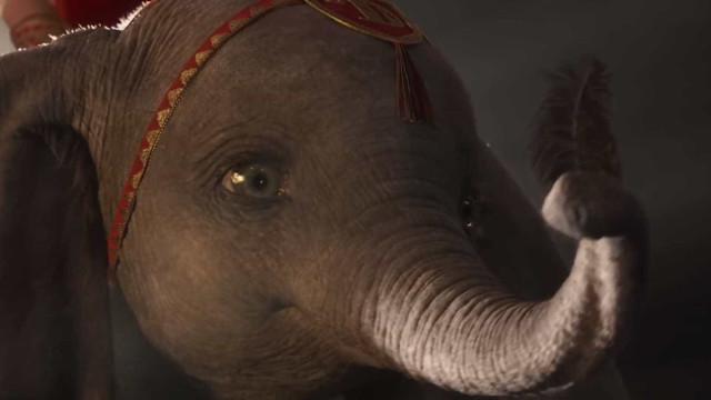 Sai o primeiro trailer do 'Dumbo' sob direção de Tim Burton