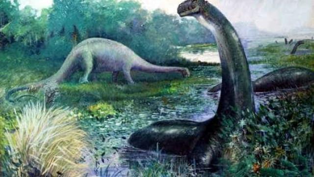 Mais antigo dinossauro pescoçudo é brasileiro, dizem pesquisadores