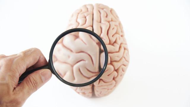 Cientistas descobrem parte do cérebro humano até então desconhecida