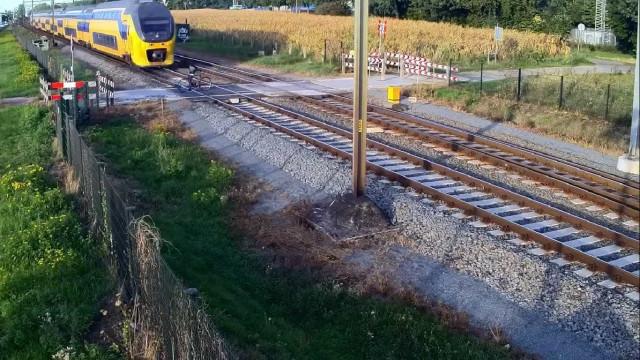 Ciclista distraído escapa por pouco de ser atropelado por trem; vídeo