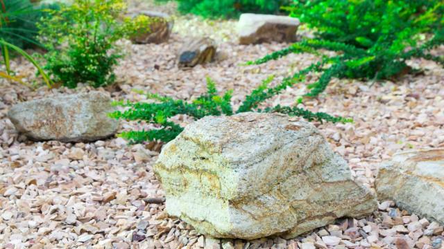 Idoso é assassinado a pedradas após cair em emboscada na Bahia
