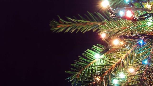Família morta no CE tinha ido buscar parentes para festa de Natal