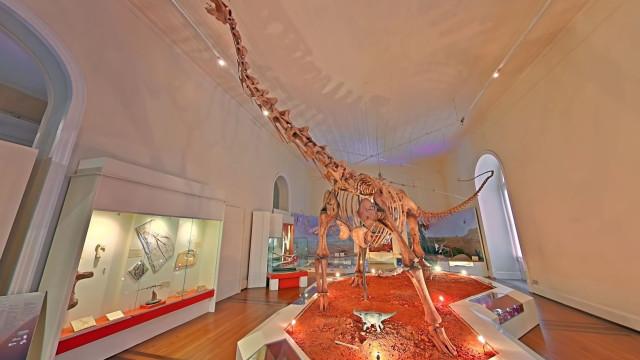 Museu Nacional do Brasil é recriado virtualmente pelo Google