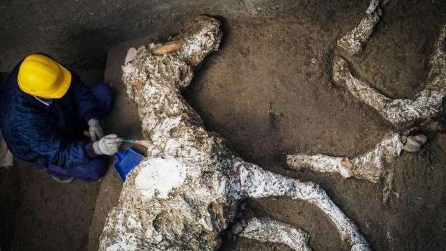 Pesquisadores encontram cavalos petrificados em estábulo milenar