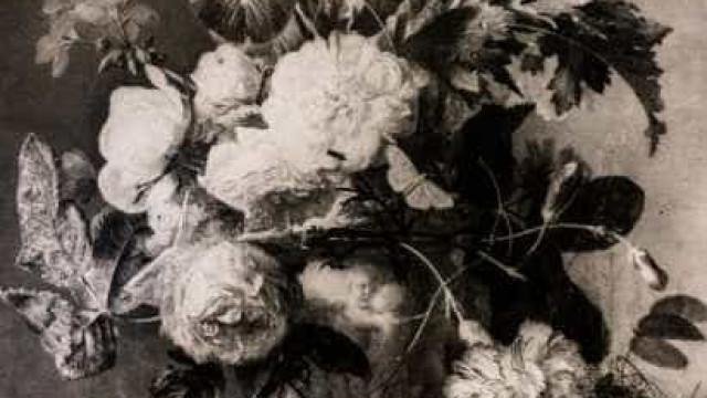 Museu pede devolução de quadro roubado por nazistas