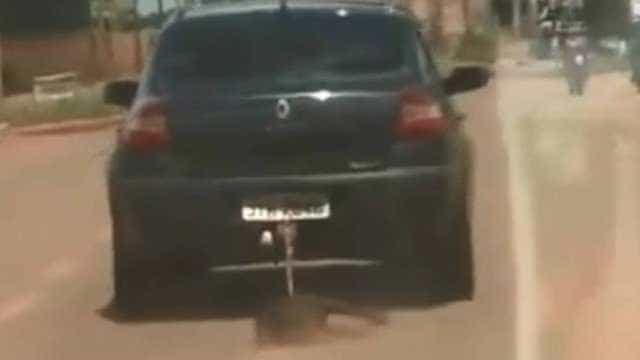 Imagens fortes flagram cachorro sendo arrastado por carro no DF