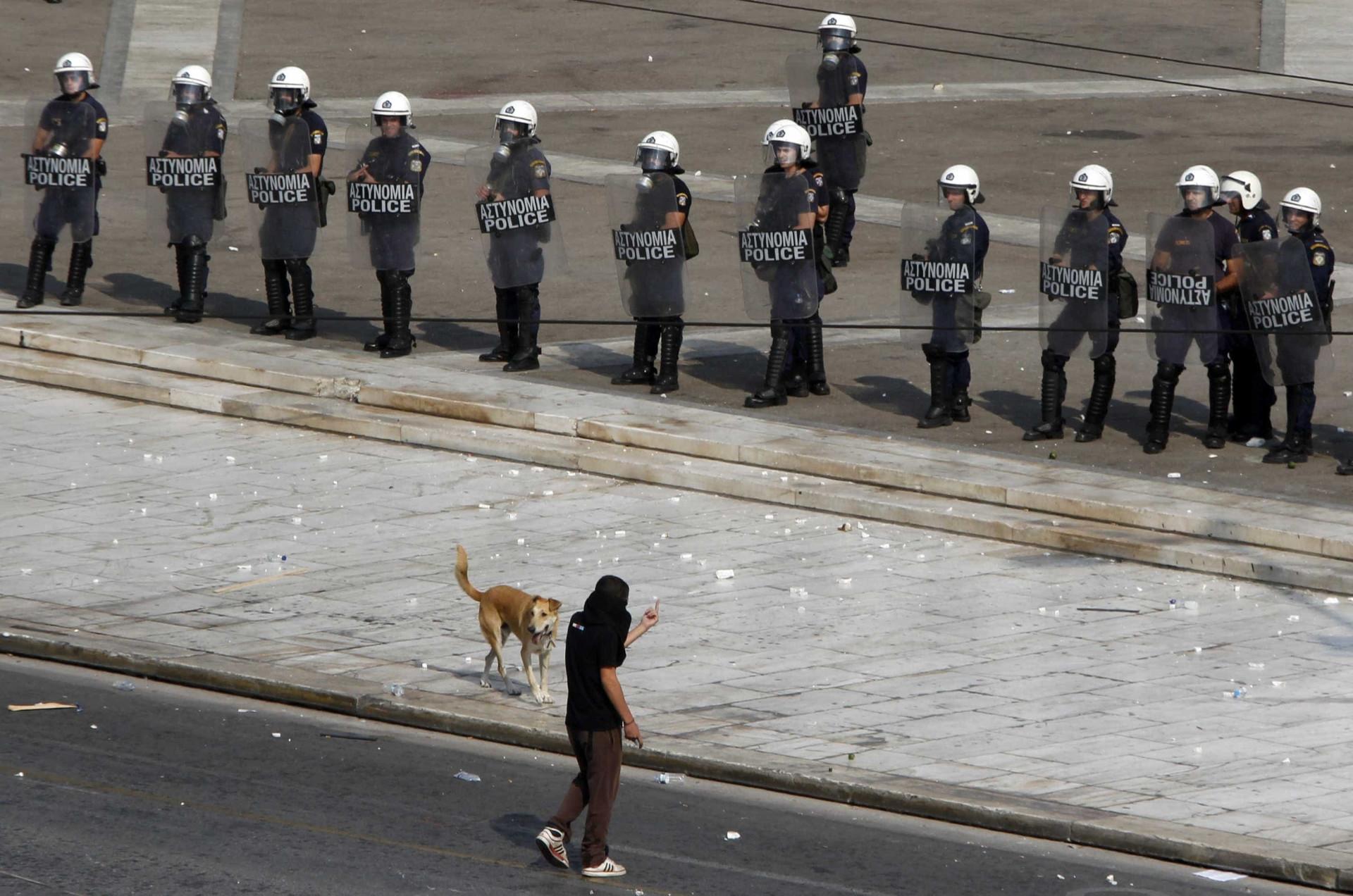 Relembre Loukanikos, o cão que foi símbolo dos protestos na Grécia