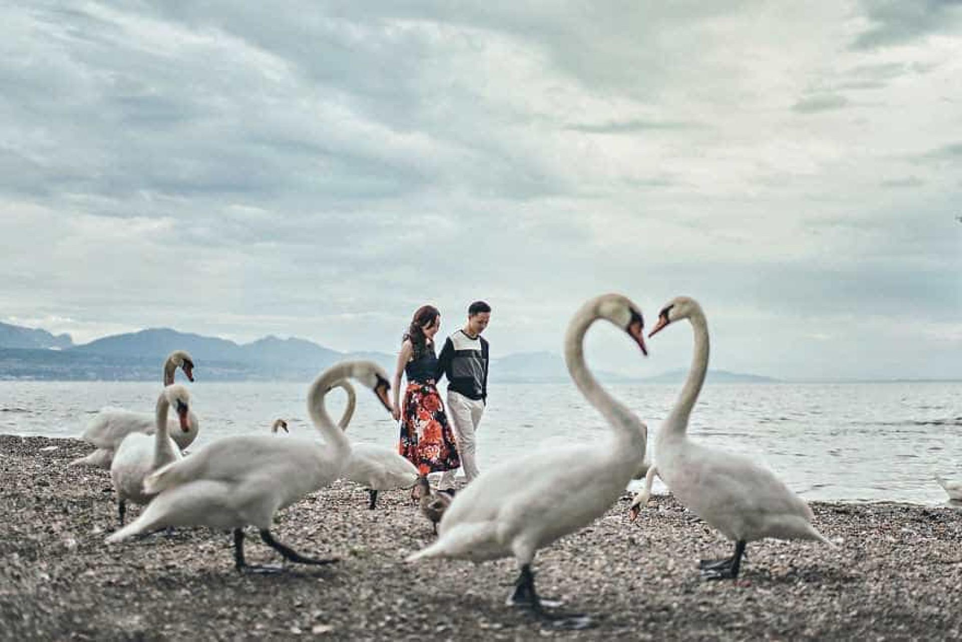 Confira as melhores fotos de noivado do mundo