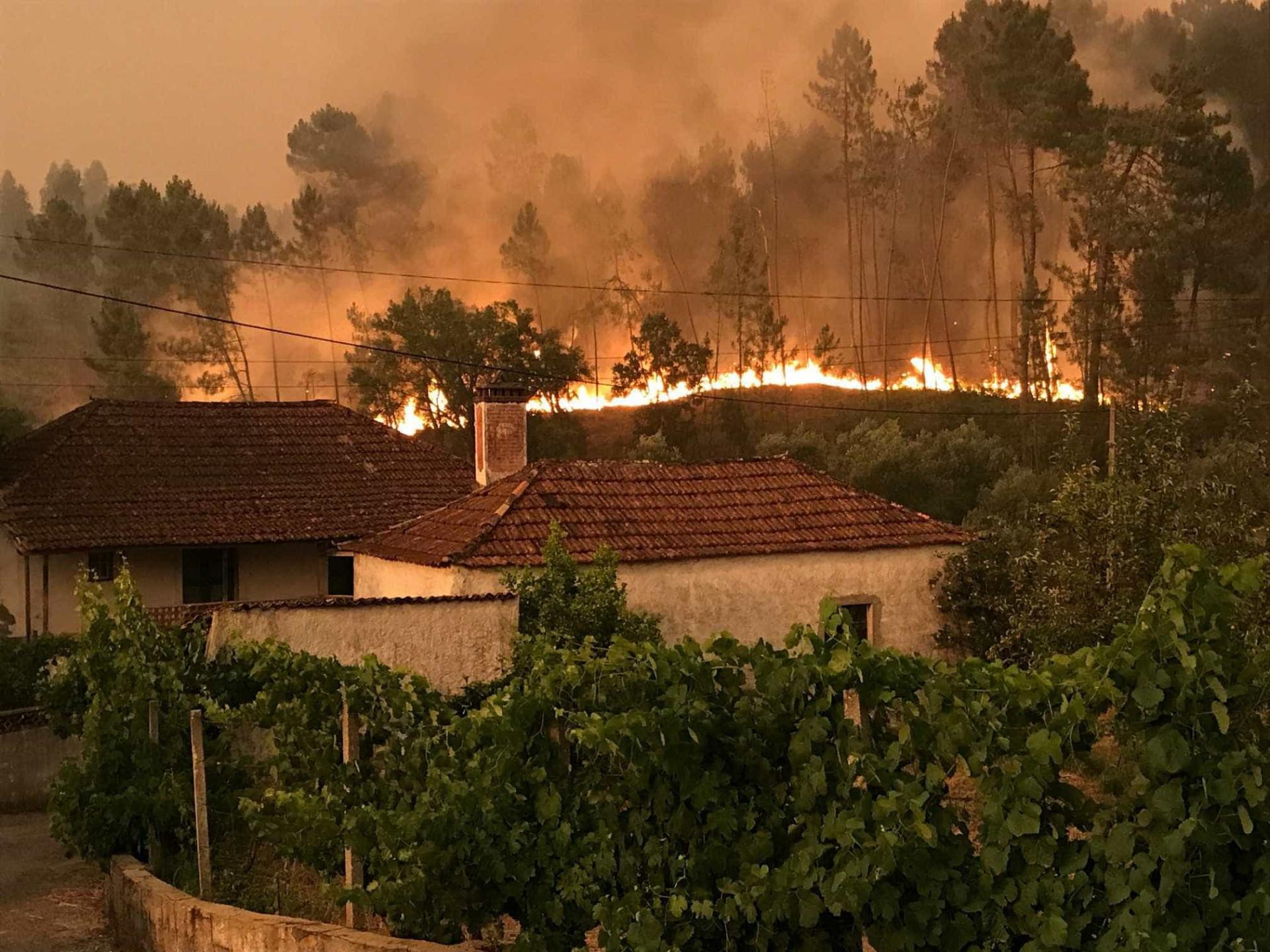 Veja as fotos do incêndio que deixou mais de 60 mortos em Portugal