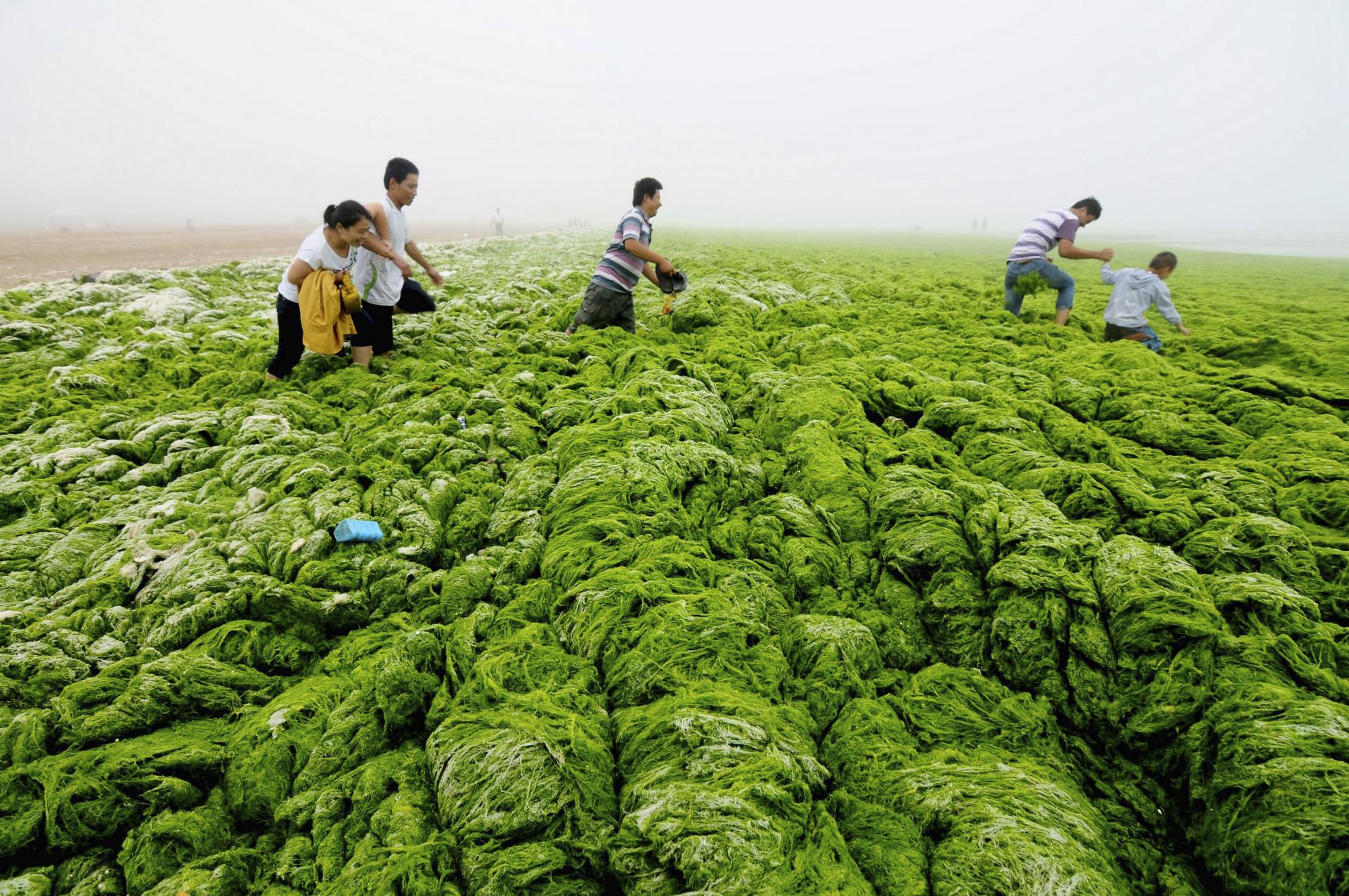 Alerta vermelho: imagens chocantes dos efeitos da poluição na China