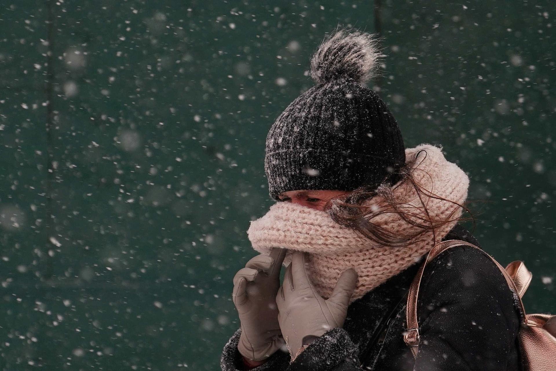 De iguanas à barbas 'congeladas', o frio nos EUA em imagens