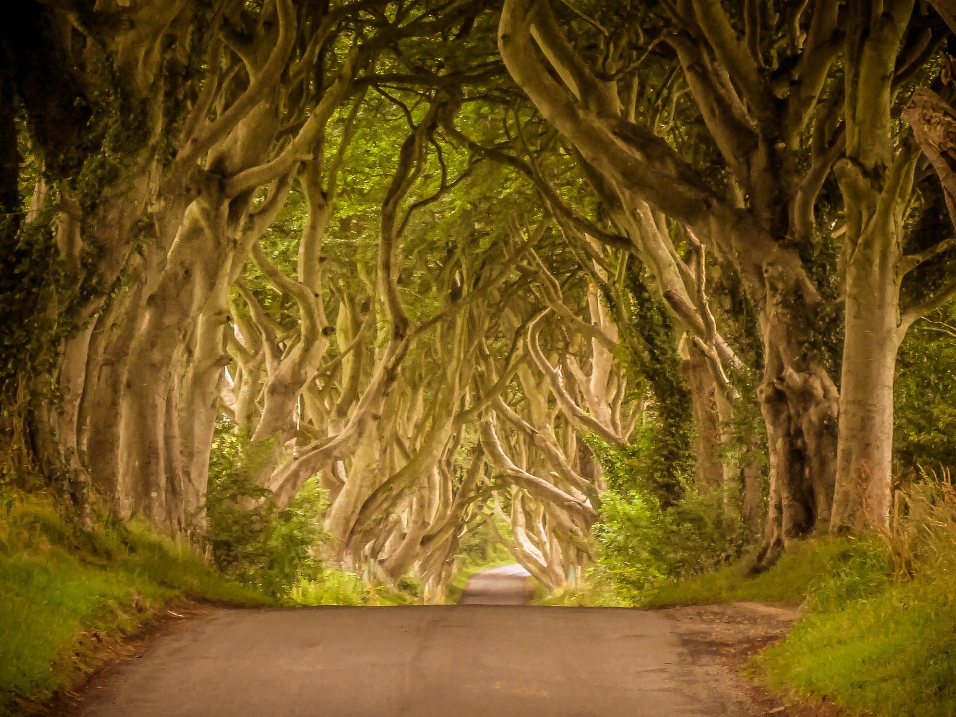 'Game of Thrones': destinos incríveis que você pode conhecer